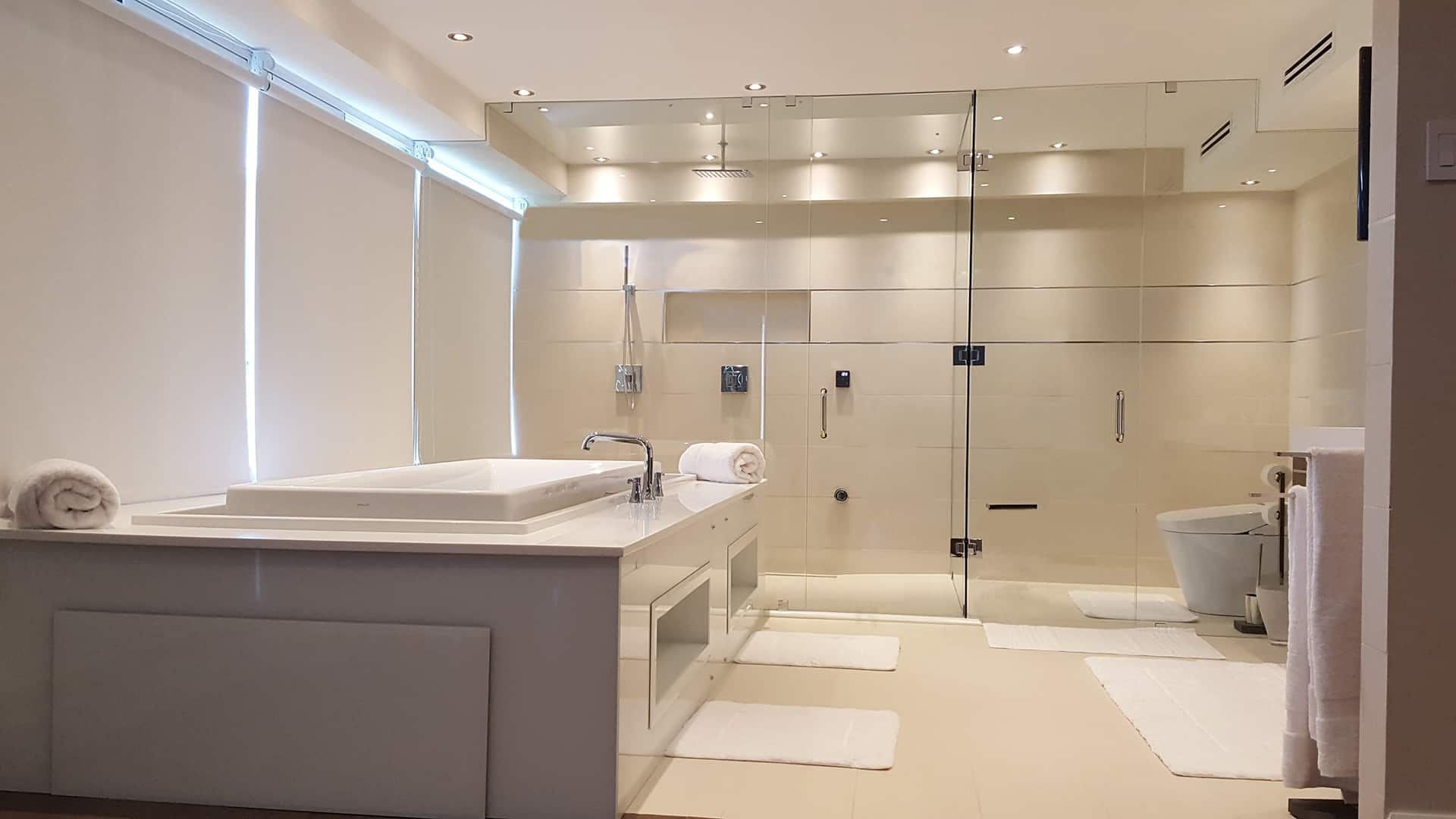 Aldora的玻璃淋浴门,步入式淋浴,浸水浴缸,瓷砖,豪华主浴室,Aldora的玻璃淋浴墙